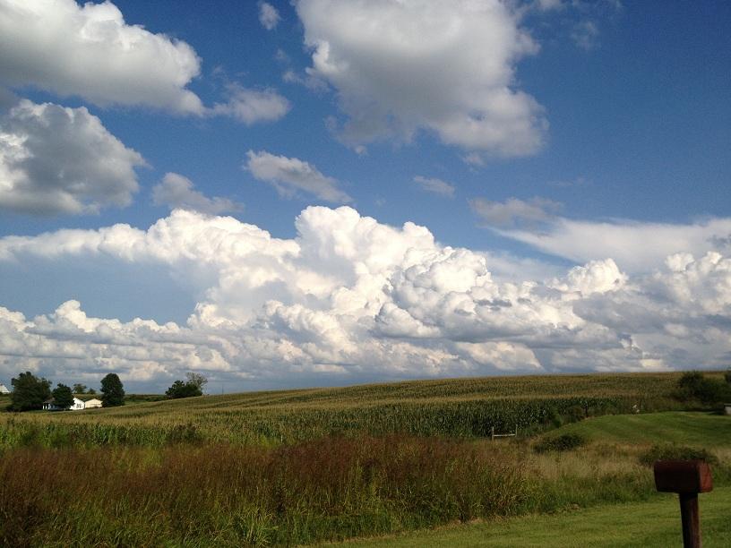 Crittendon County 8-2013