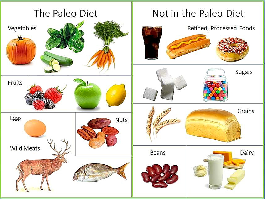 Paleo diet - what to eat