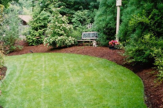 Mad about Mulch – Ten Ways to Mulch