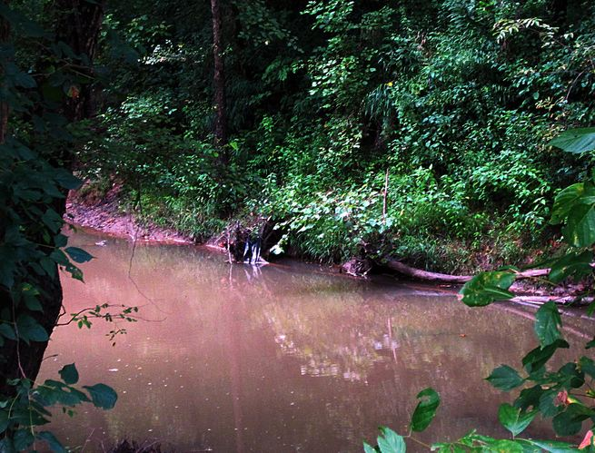 Our swimming hole was muddy when we finished with it