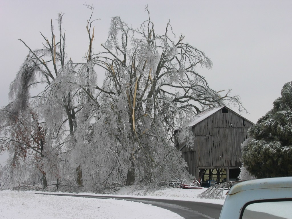 Kentucky Historic Ice Storm 2009