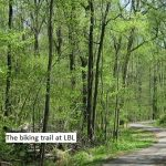 LBL in spring - a road less travelled LBL