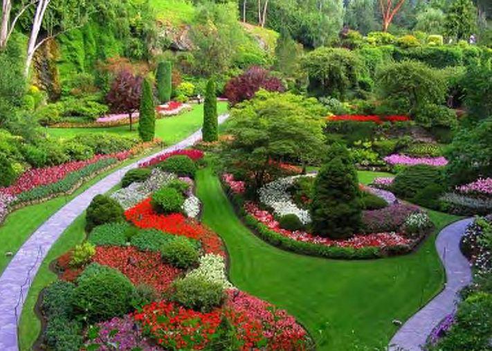 My Own Little Garden of Eden